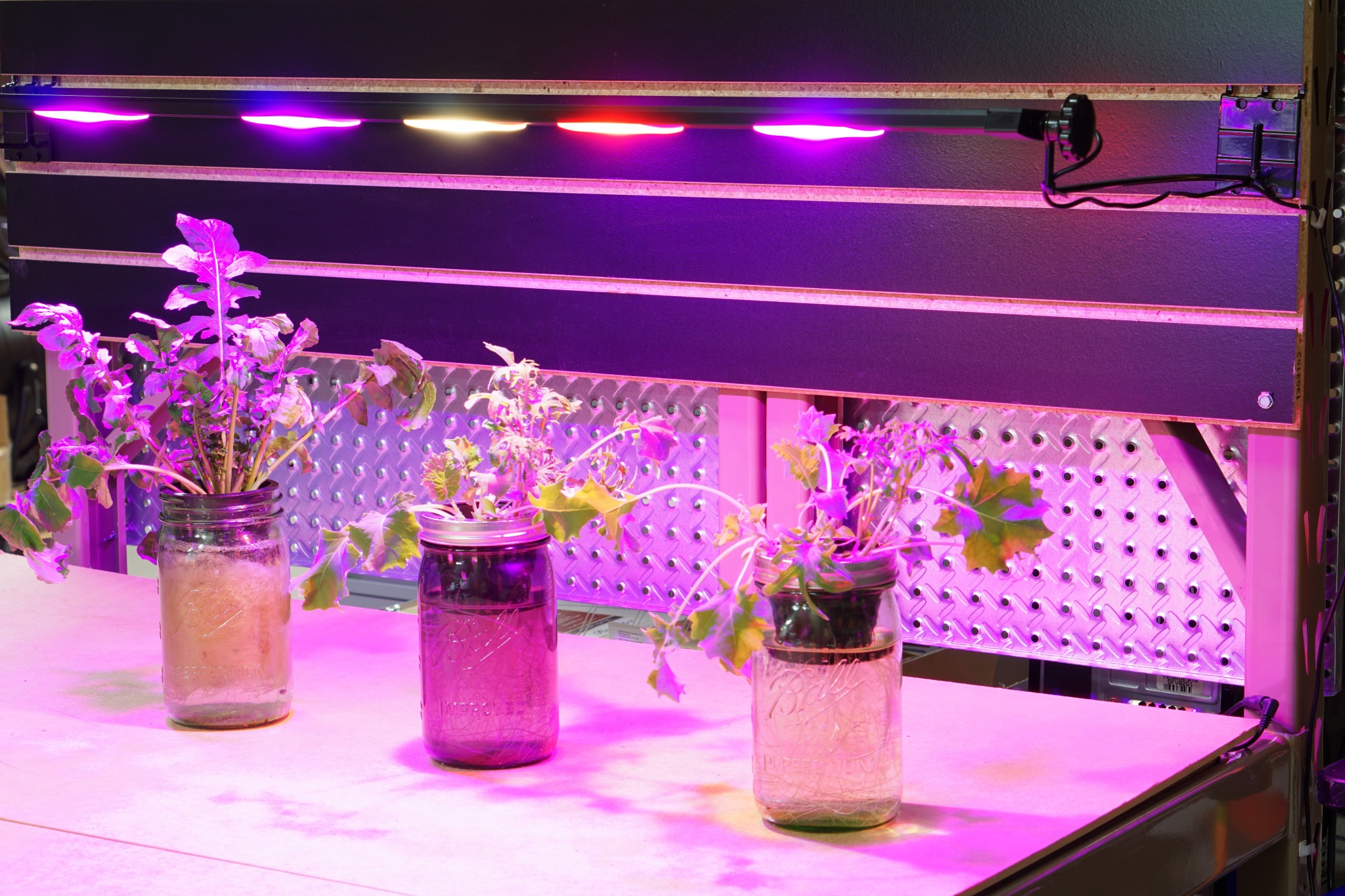 F6 Spectrum, horticultural lighting, hydroponics, passive hydroponics, vertical growing, tower garden